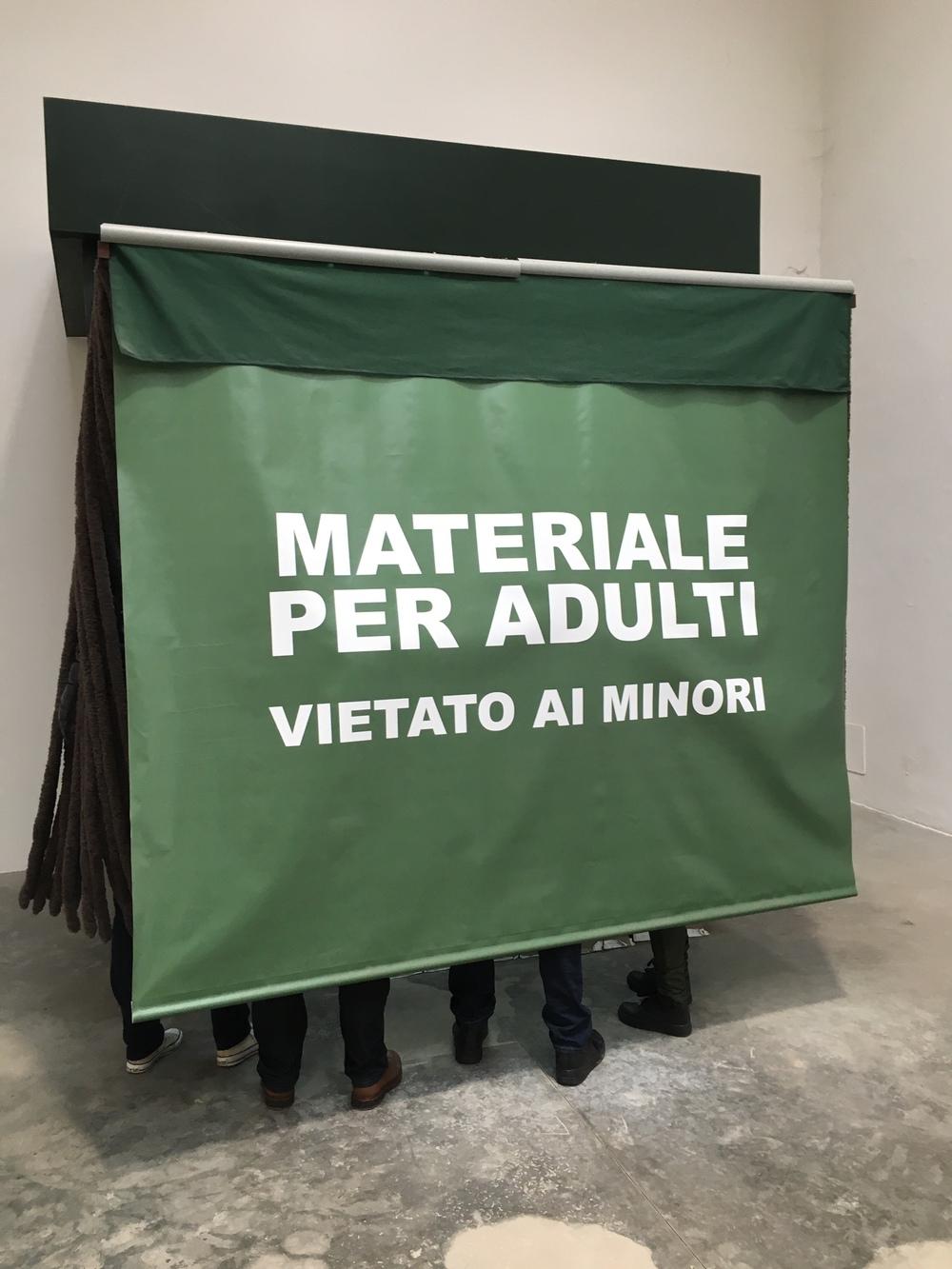 Artist Francesc Ruiz, Spanish Pavilion, la Biennale di Venezia 2015