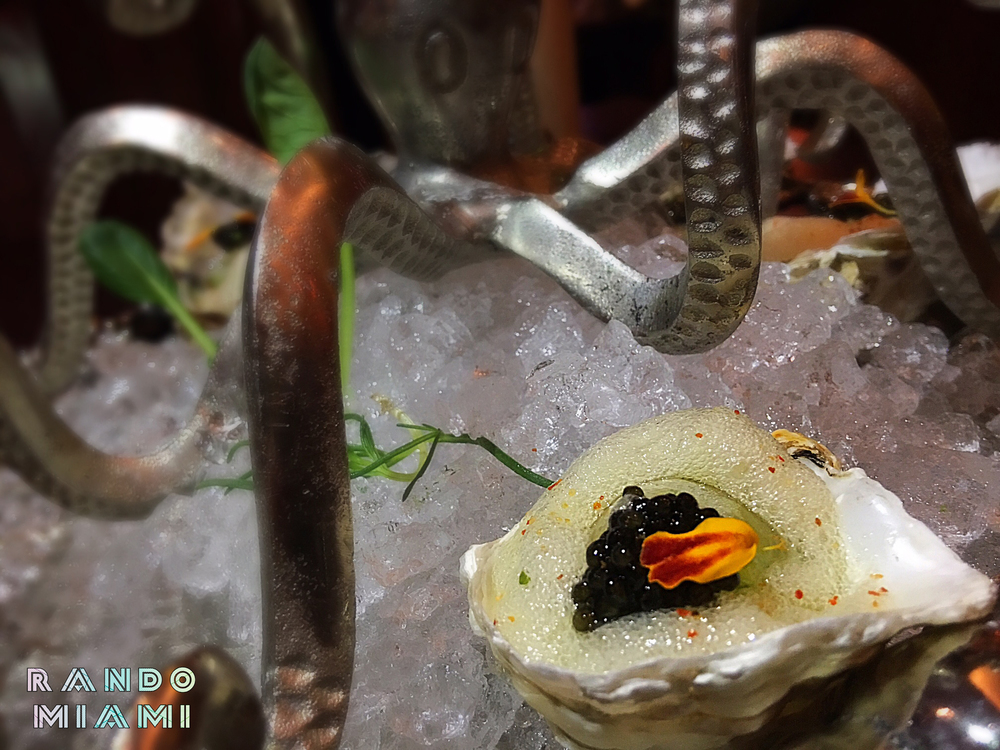 Champagne Oysters & Caviar