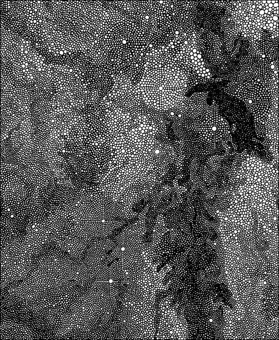 "Eagle Nebula (detail) / pen on paper / 14"" x 17"" / 2012"
