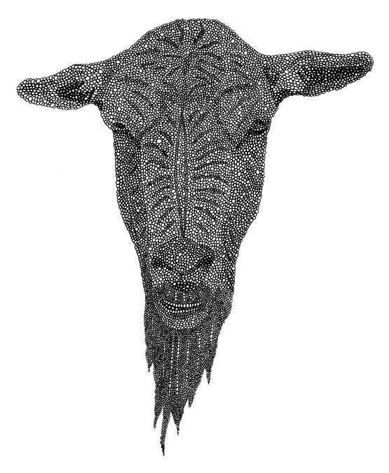 "Goat / pen on paper / 6.5"" x 10"" / 2011"