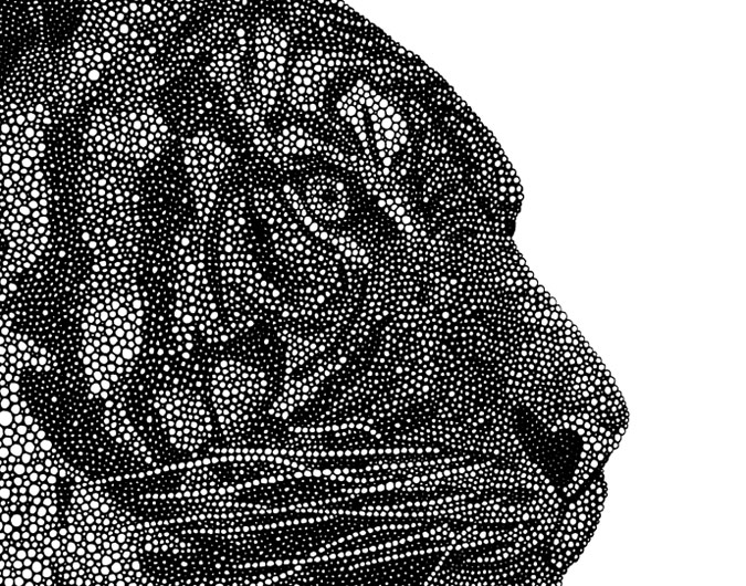 "Tigress (detail) / pen on paper / 14"" x 17"" / 2014"