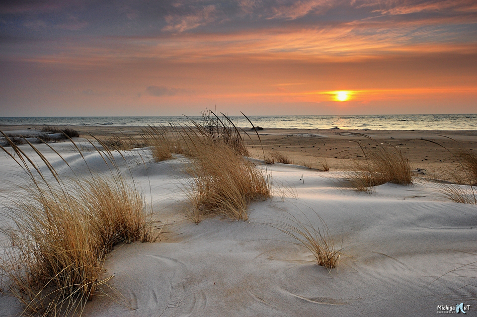 lake huron dune grass sunrise edit 2014.jpg