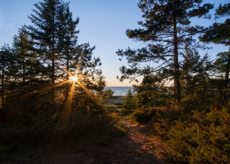 Wilderness State Park #3