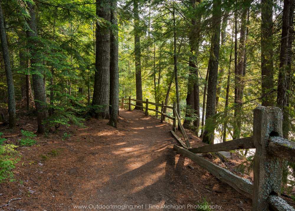 Trail at Tahquamenon Falls State Park