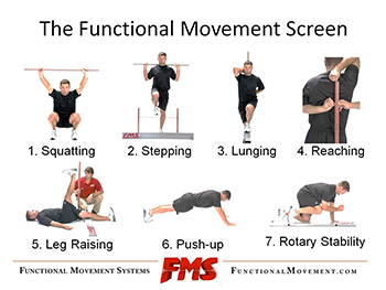 Pictured above: The traditional 7-point movement screen.  www.functionalmovement.com