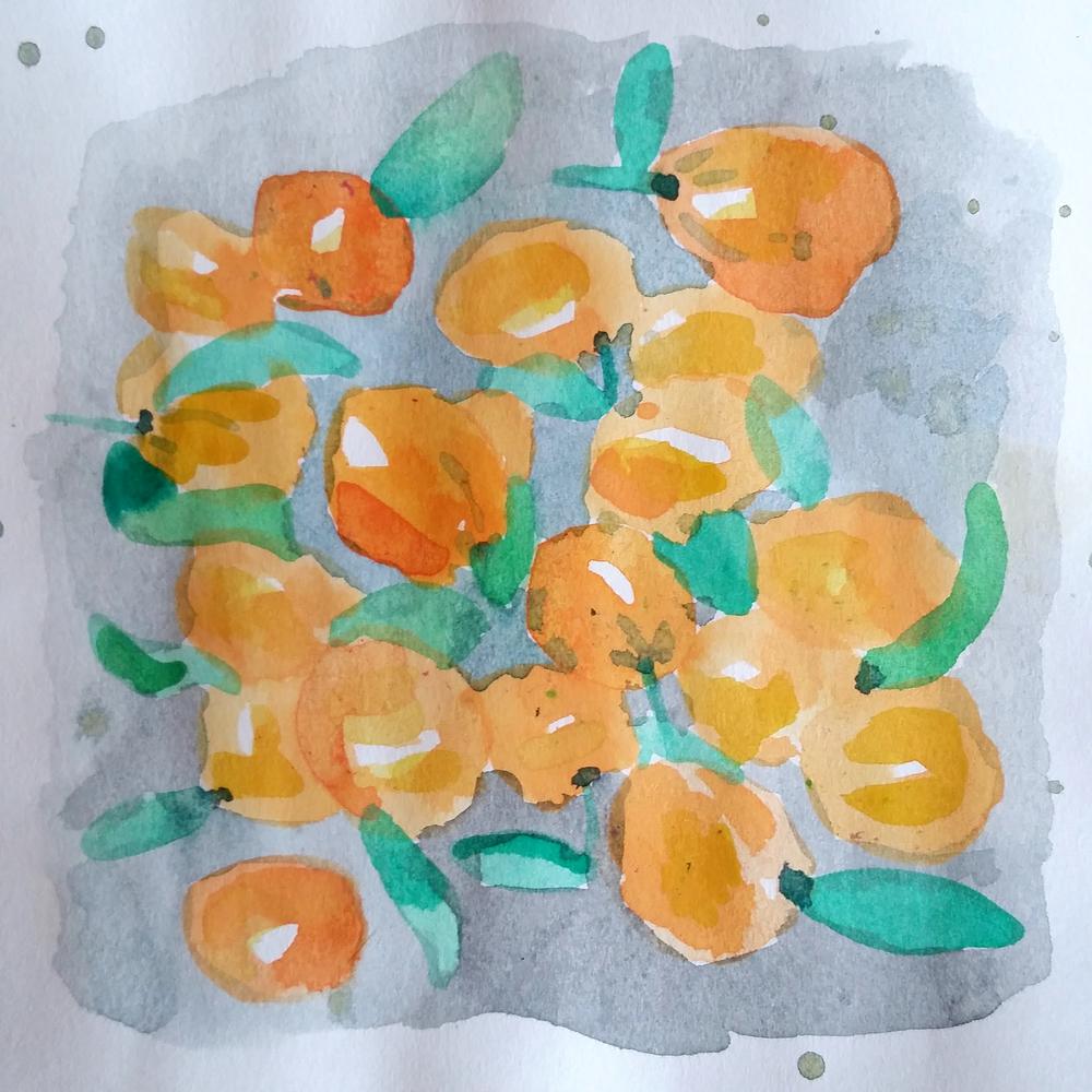 Mandarins from the Asian Market.