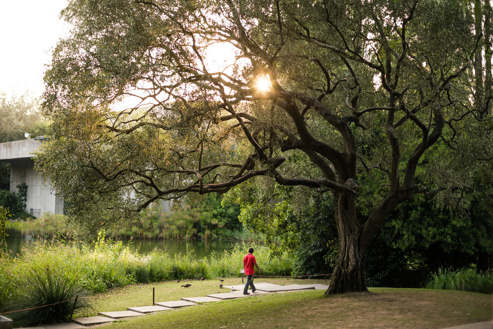 Jardins Fundação Calouste Gulbenkian
