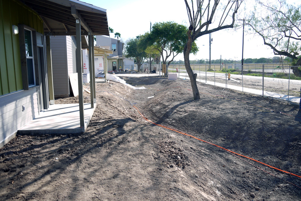 Across the site, landscaping incorporated existing vegetation.