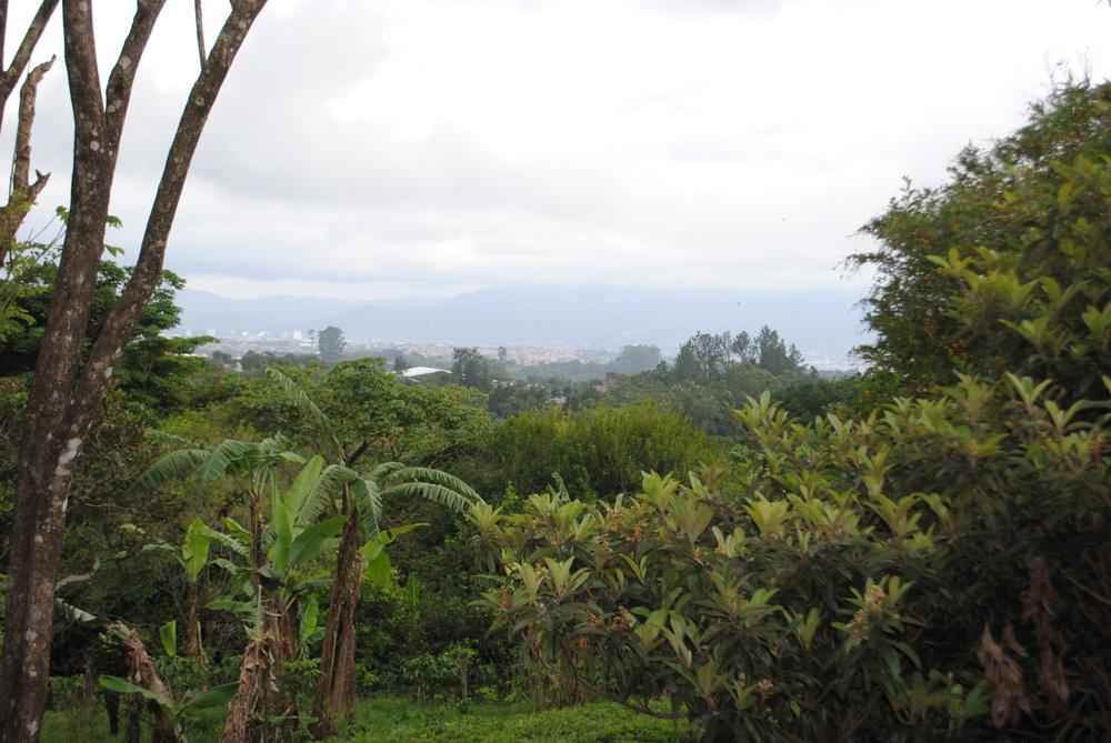 Costa Rica 2014 140.JPG