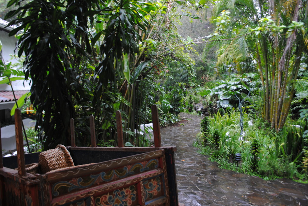 Costa Rica 2014 153.JPG