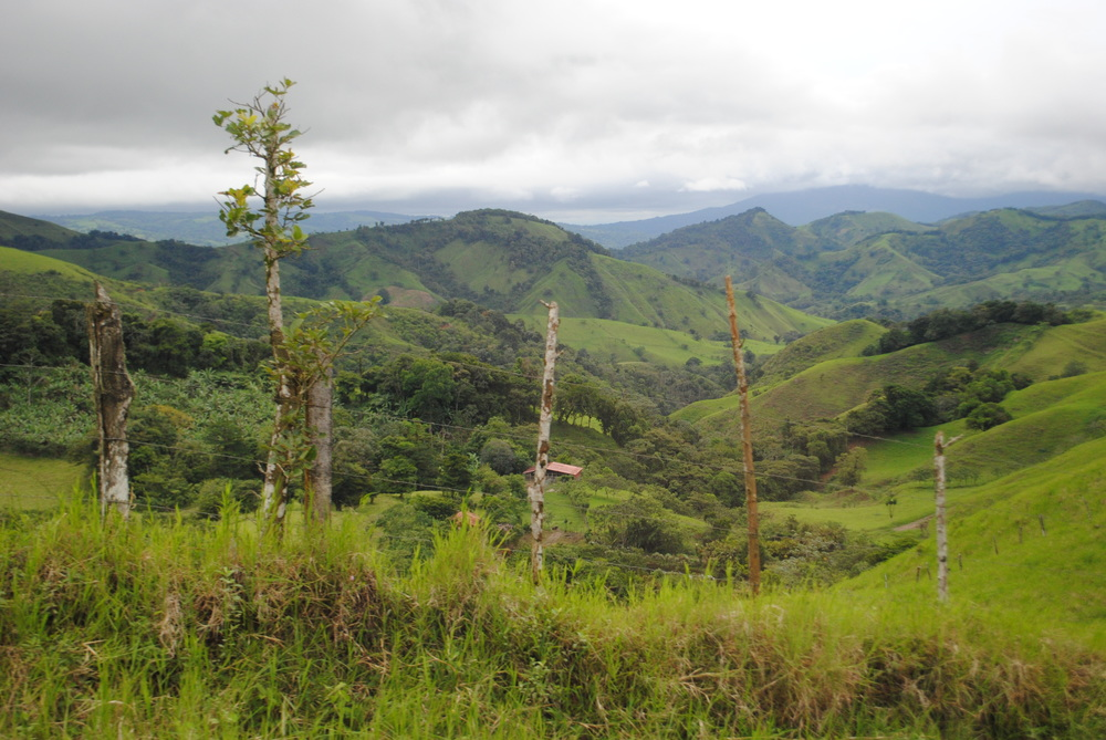 Costa Rica 2014 334.JPG