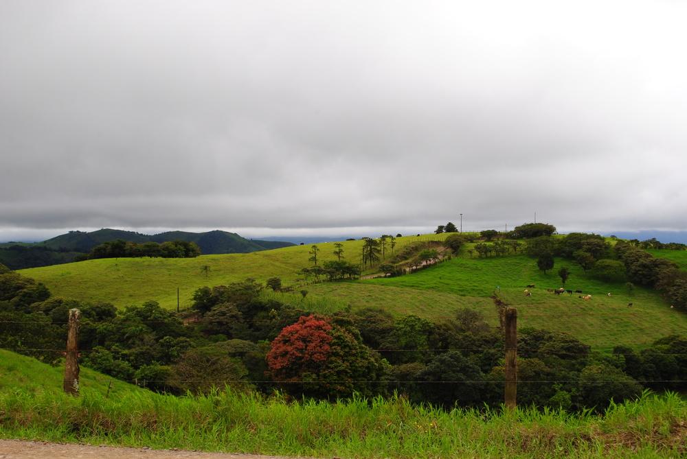 Costa Rica 2014 343.JPG
