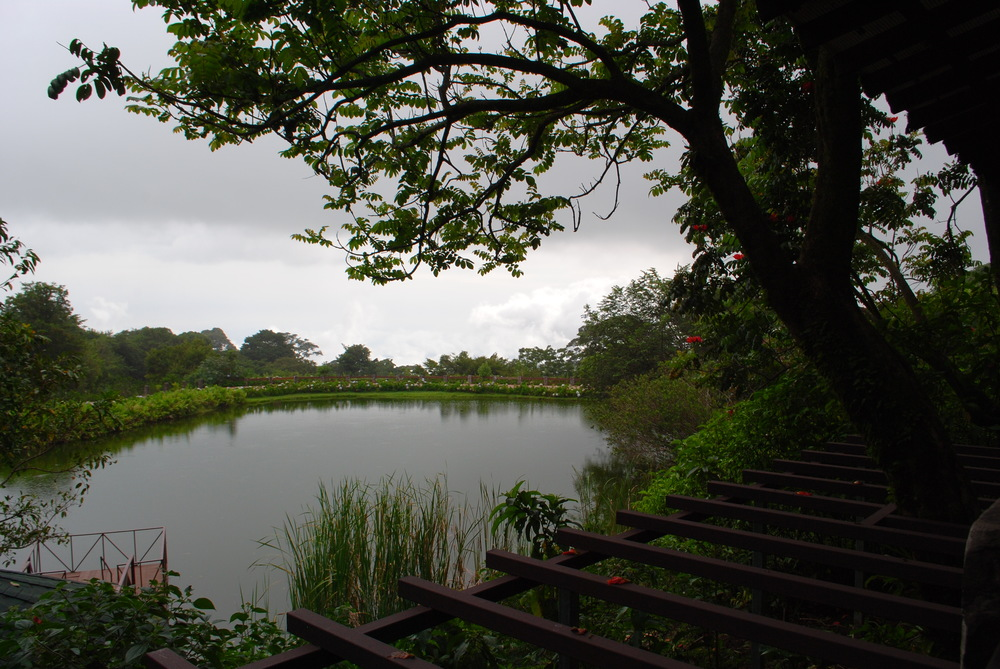 Costa Rica 2014 418.JPG