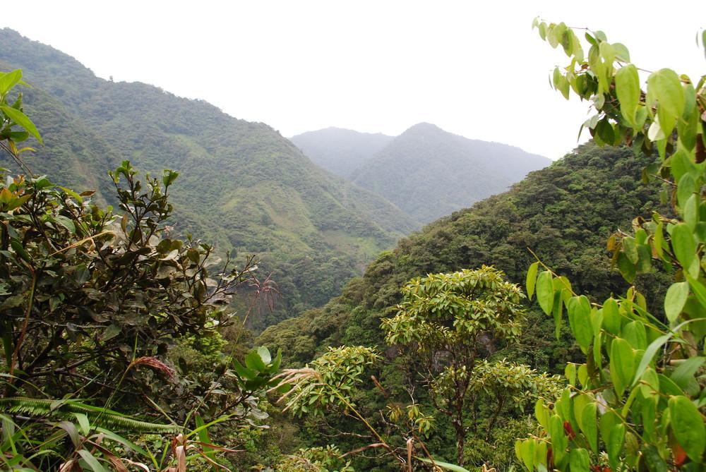 September - Home-Ecuador 606.JPG