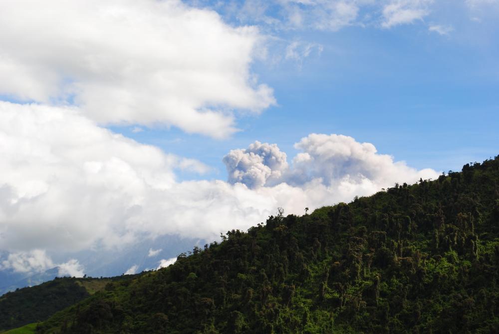 September - Home-Ecuador 677.JPG