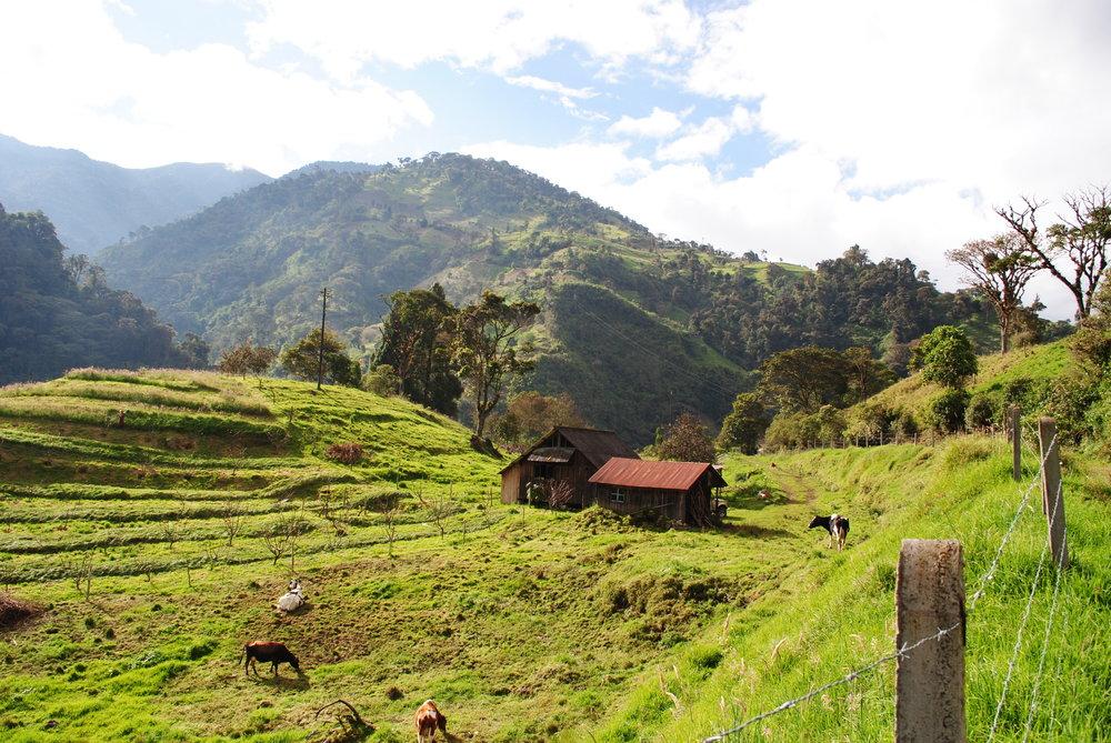 September - Home-Ecuador 690.JPG