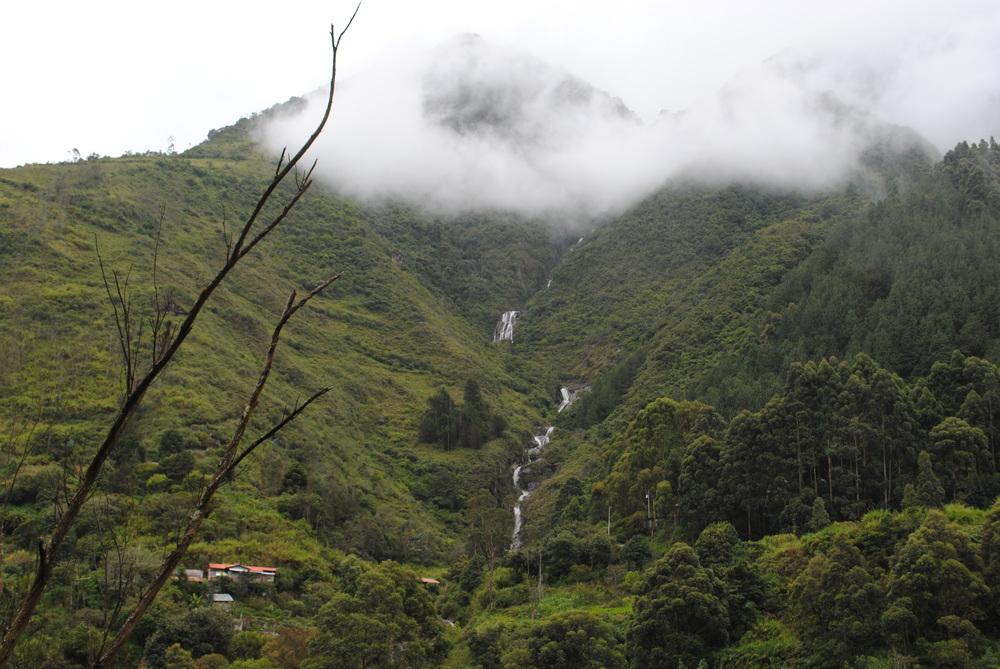 September - Home-Ecuador 719.JPG
