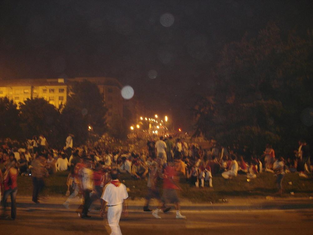 The fireworks watching crowd.jpg