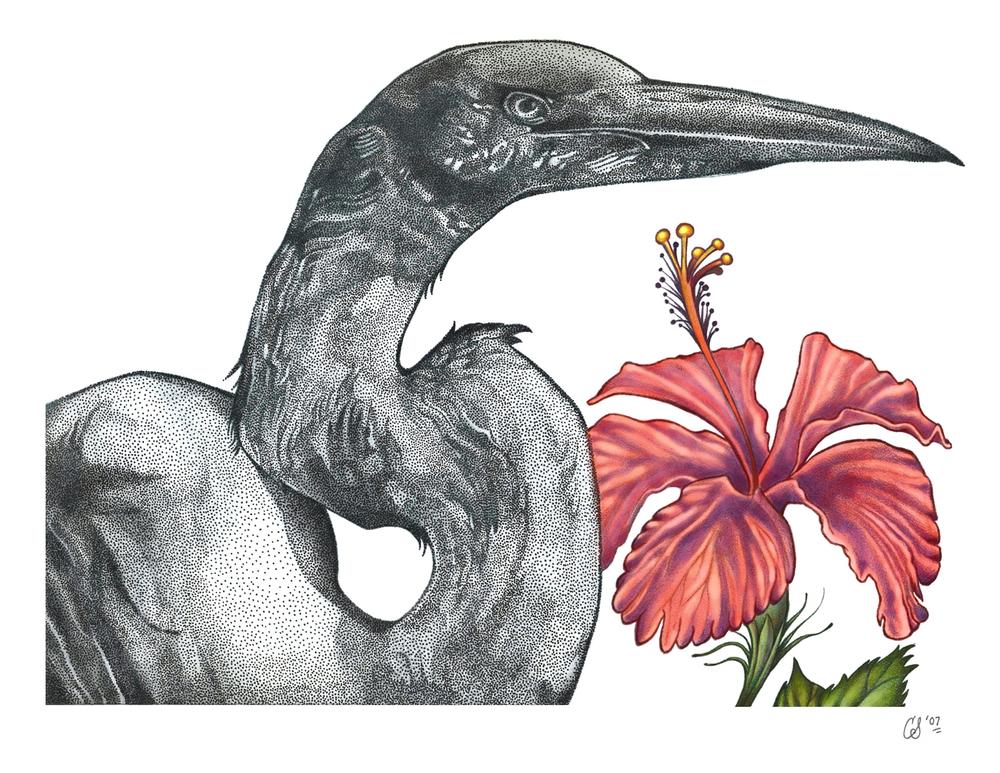 Egret with Hibiscus