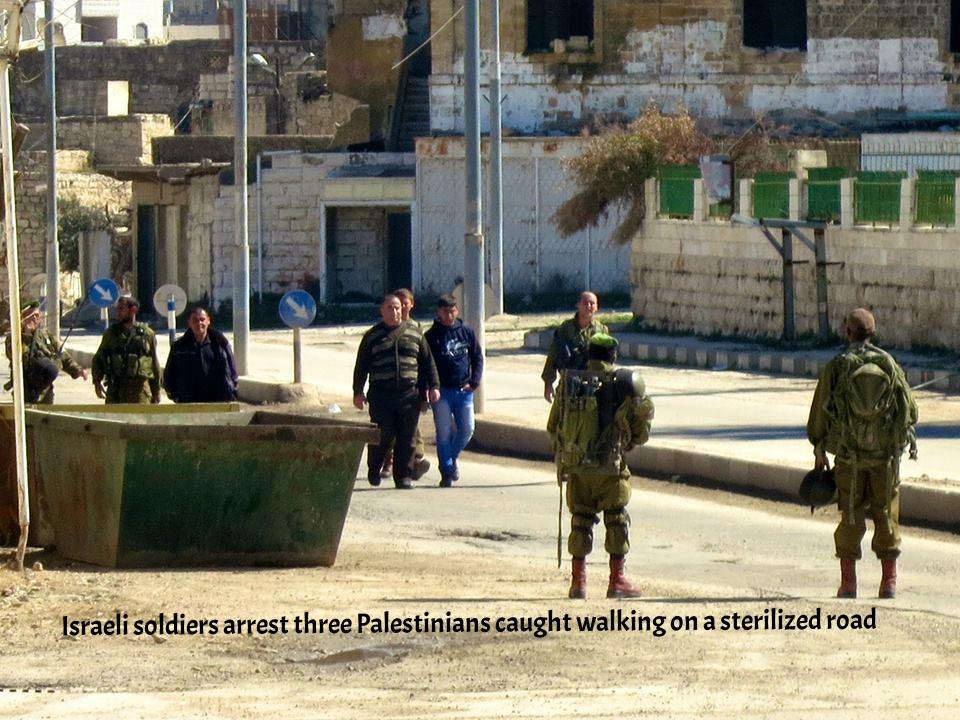 Israeli soldiers arrest three Palestinians caught walking on a sterilized road.jpg