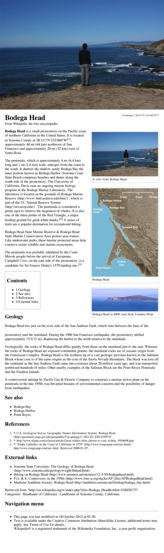 David Horvitz, 'Public Access (Bodega Head)'  Ongoing wikipedia intervention.