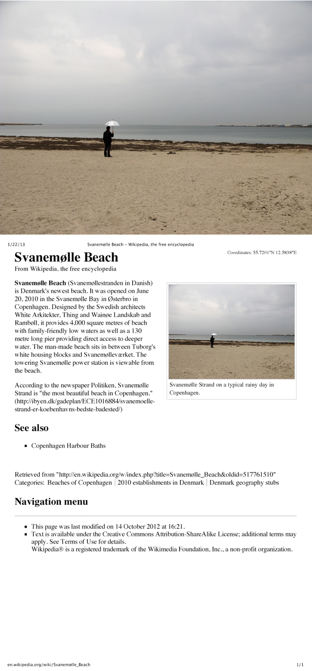 David Horvitz, 'Public Access (Svanemølle Beach, Copenhagen)' Ongoing wikipedia intervention