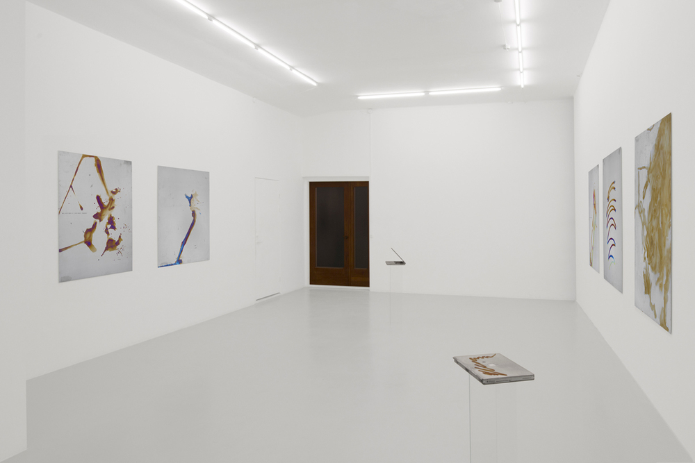 Installation view from Mikkel Carl's exhibition  Calculated Optimism