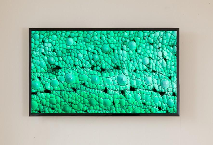 Chameleon , 2014 8 min. HD-video, looped chameleon skin in 360° hue displacement