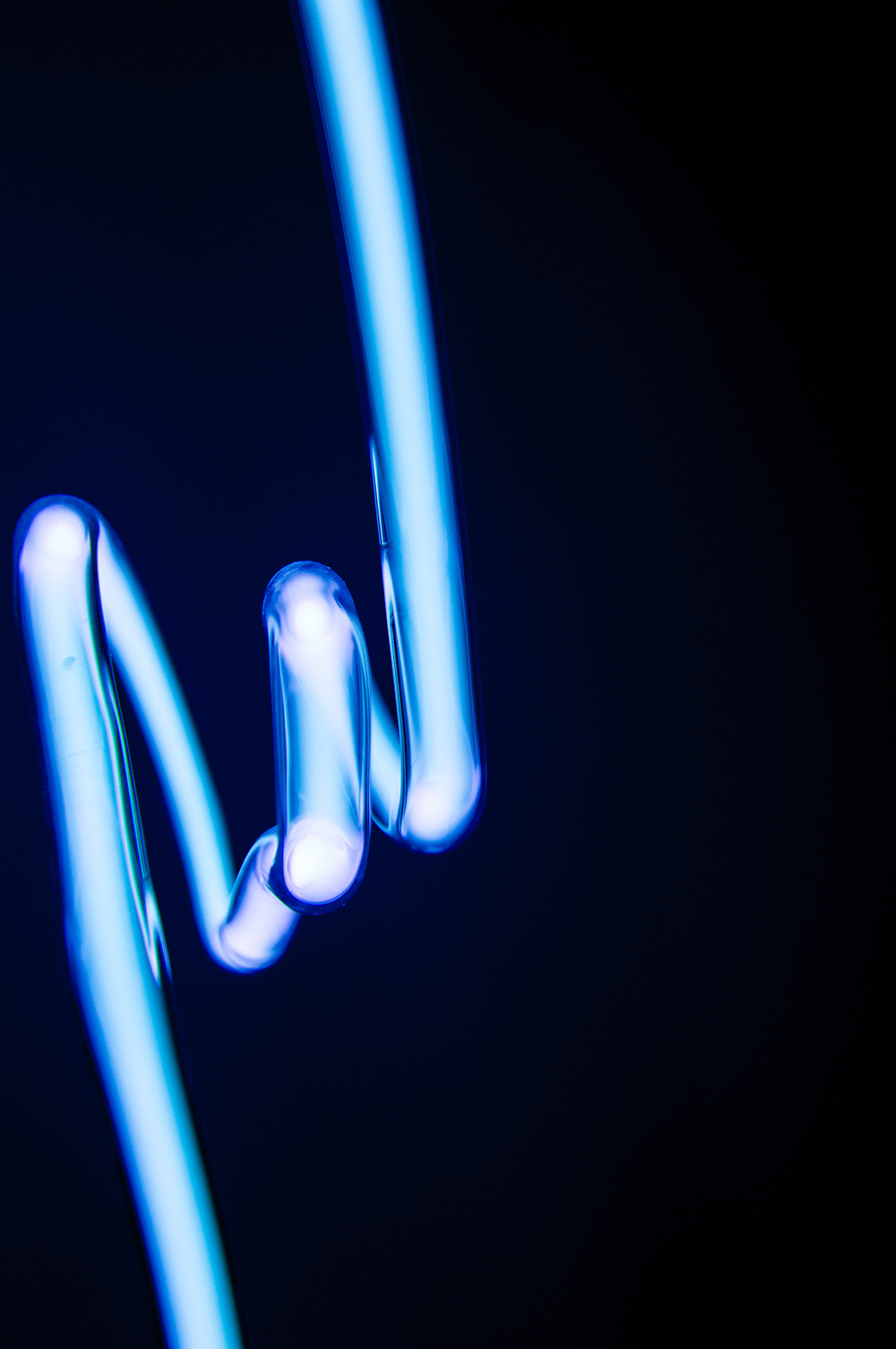 Tebessa  - Detail 2011 Dimensions variable Neon Light