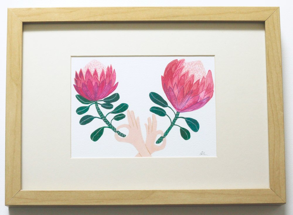 Proteas in Hands - 12x17cm gouache and pencil on paper €50