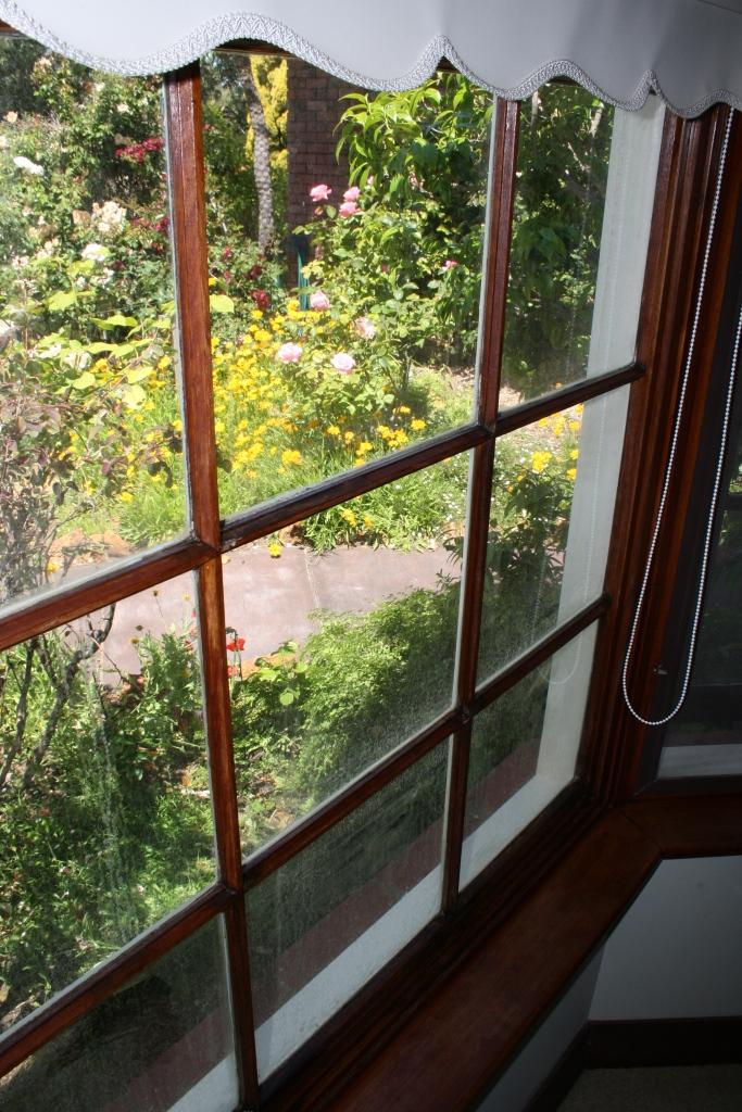 TRIG_WindowPane.jpg