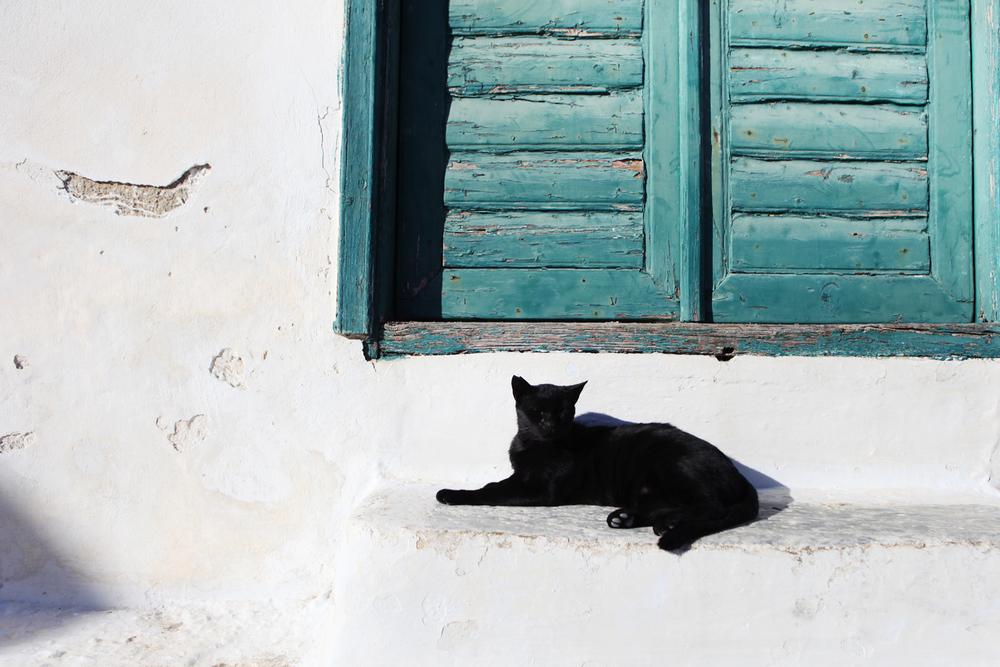 GREECE-AMORGOS-AMANDAJULCA-DESTINATIONWEDDING-60.JPG