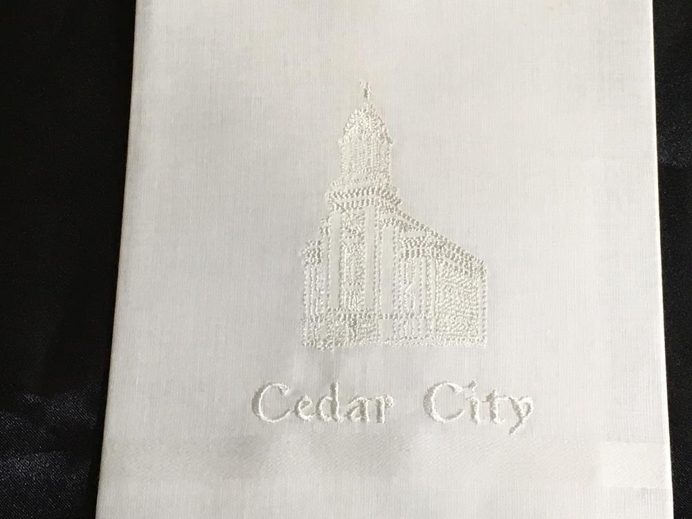 Cedar City Men.jpg