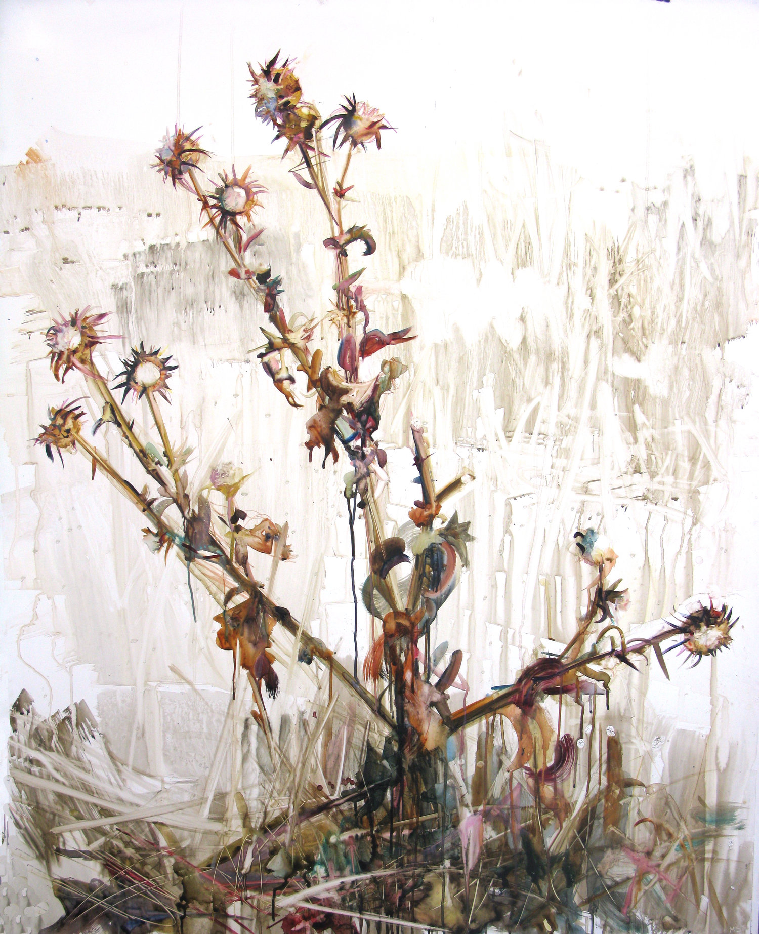Flowers For Difficult Women Molly Segal
