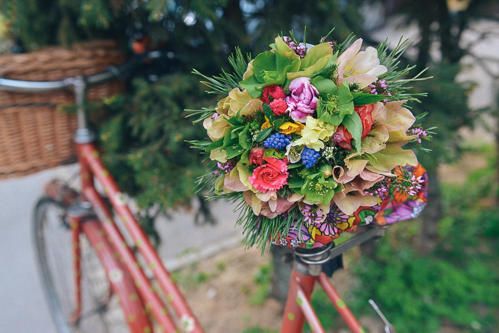 Flowers_foto_Mankica_Kranjec.jpg