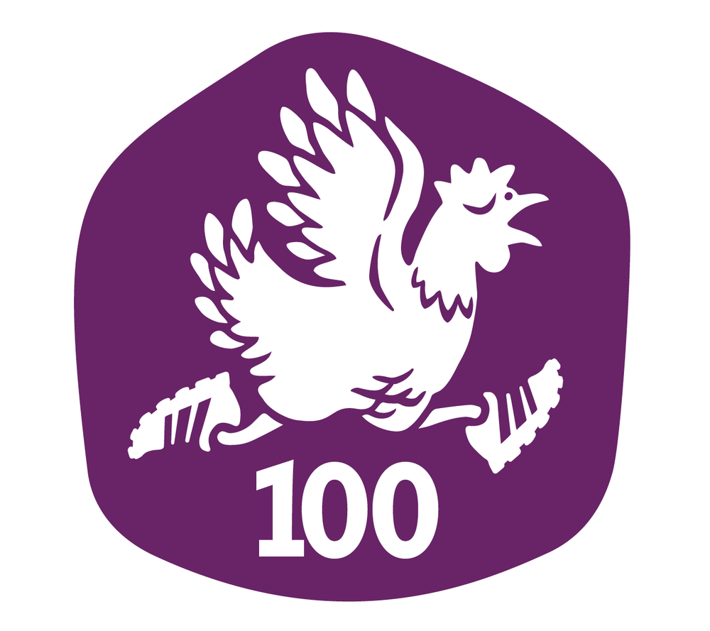 wsa-icon.png