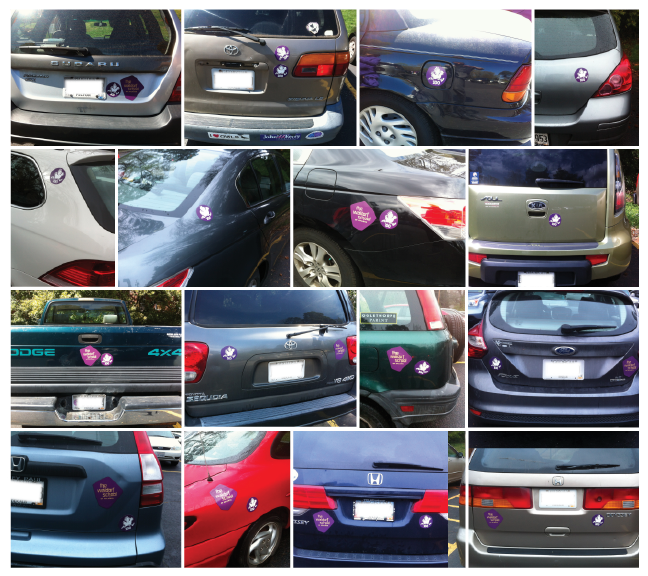 wsa-cars.png