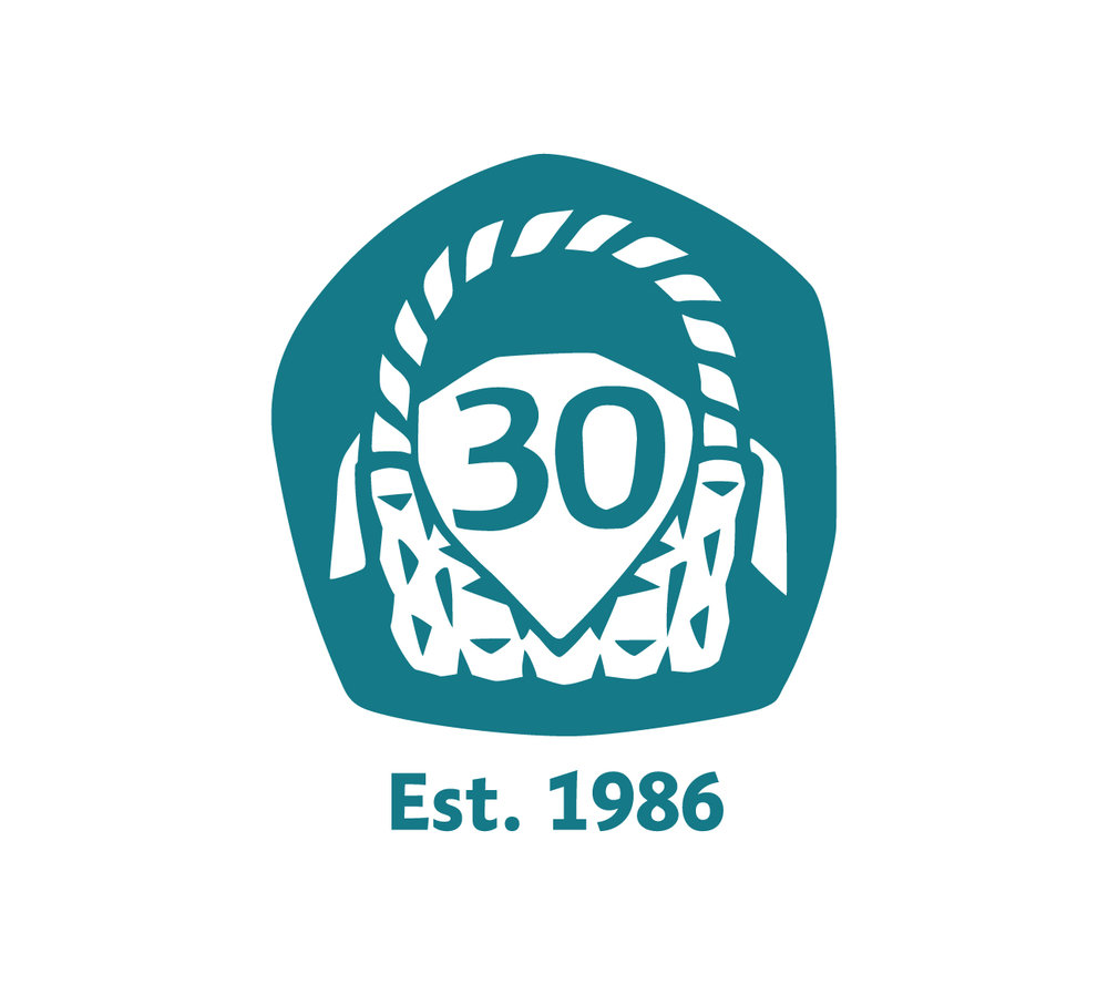 wsa_30th_logo-small.jpg