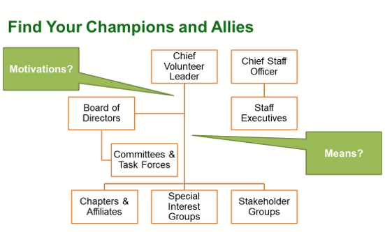 Champions and allies diagram (2).png