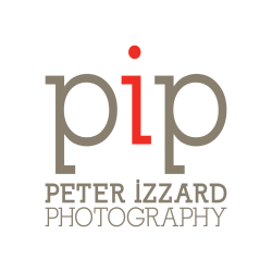 PIP Logo_100mm wide_Red485_Grey404_white background Profile G+.png