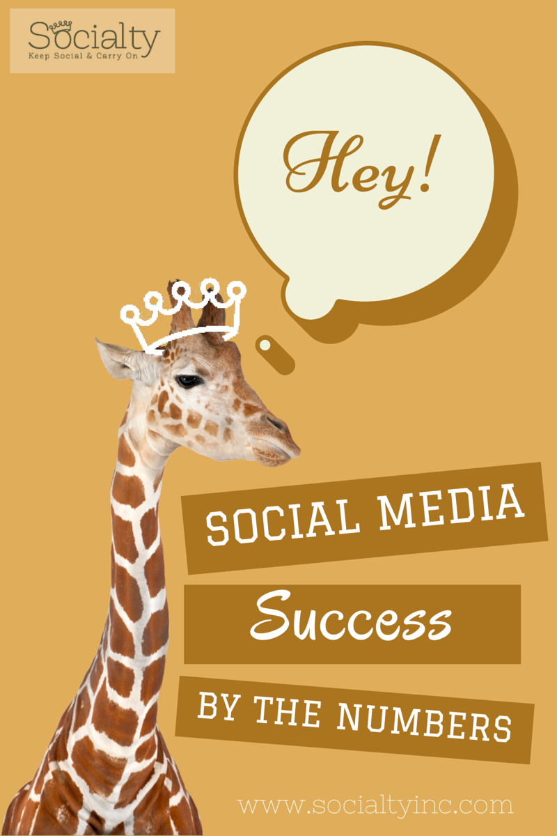 socialty social media success.jpg