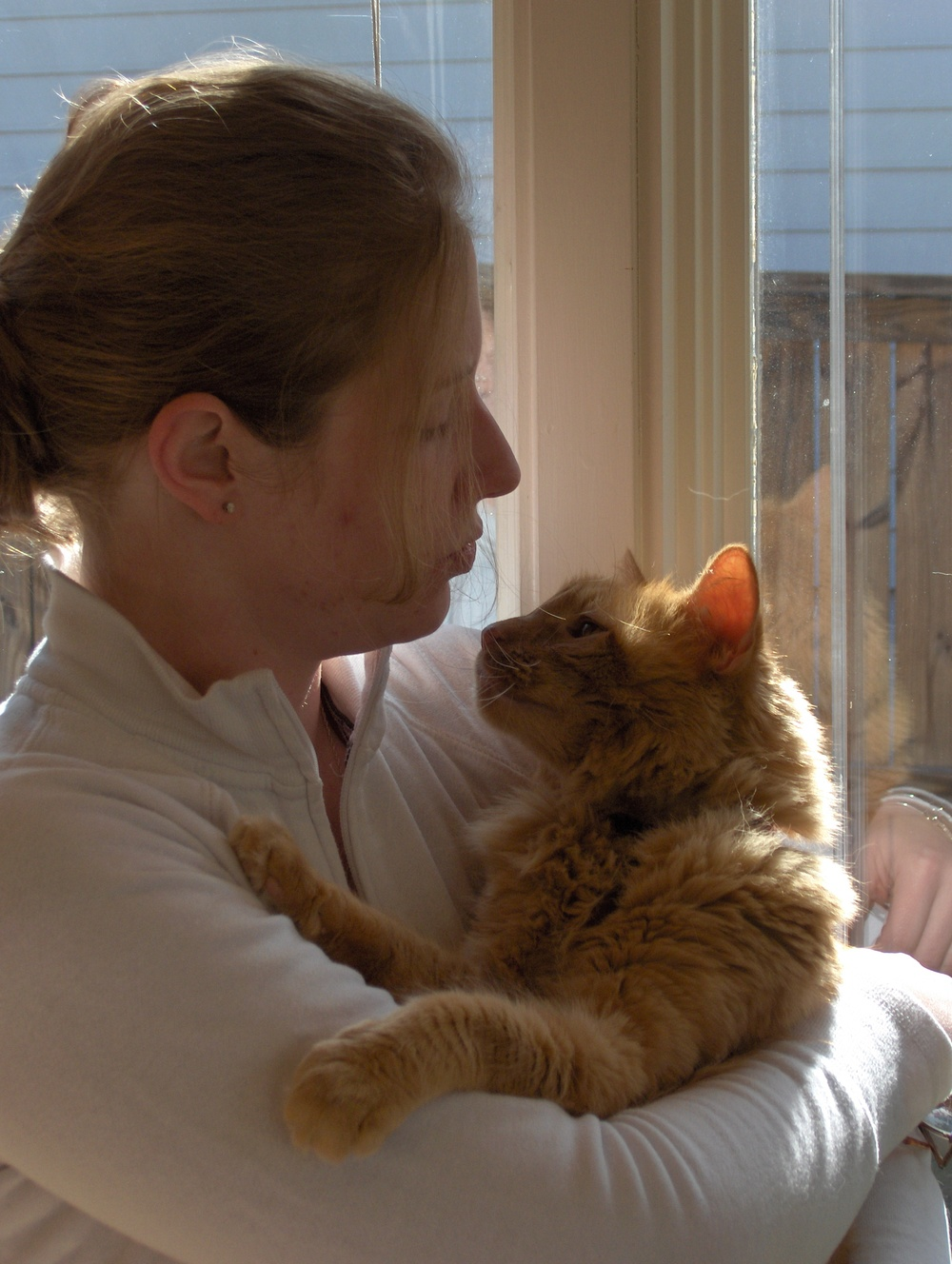 trianglevrh-triangle-veterinary-referral-hospital-tvrh-woman-holding-orange-cat.JPG