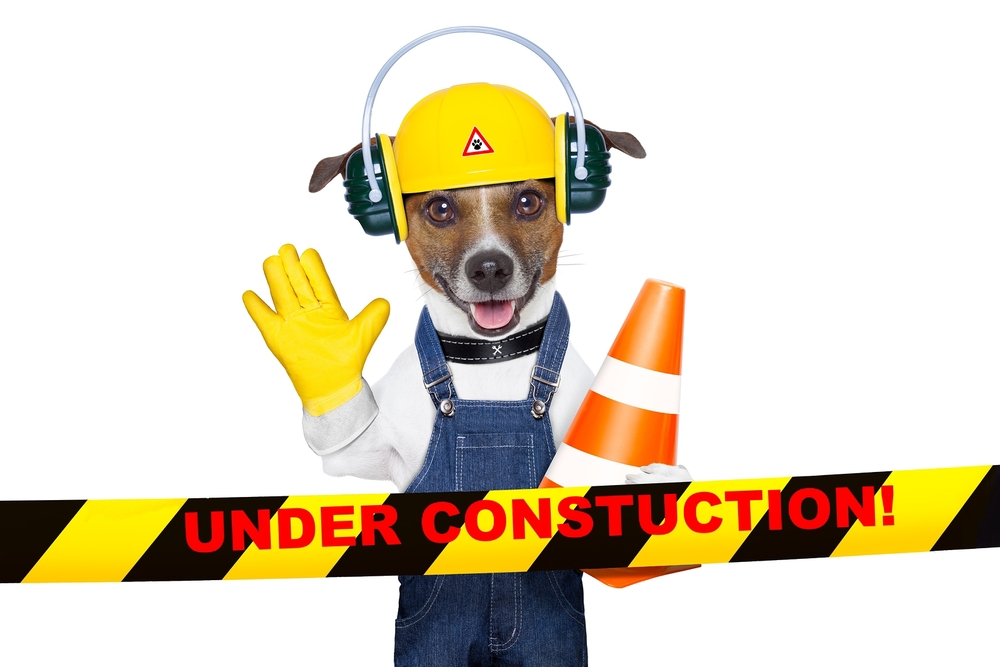 bigstock-Under-Construction-Dog-47595958.jpg