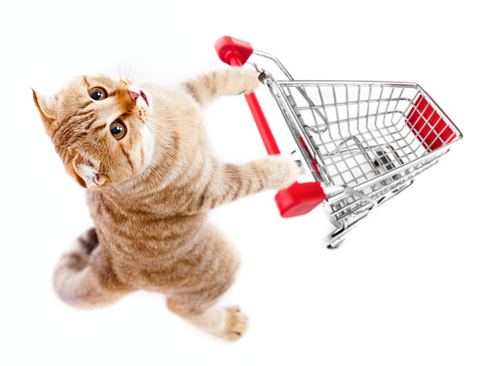 bigstock-cat-with-shopping-cart-top-vie-23331497 triangle veterinary referral hospital tvrh triangle vrh.jpg