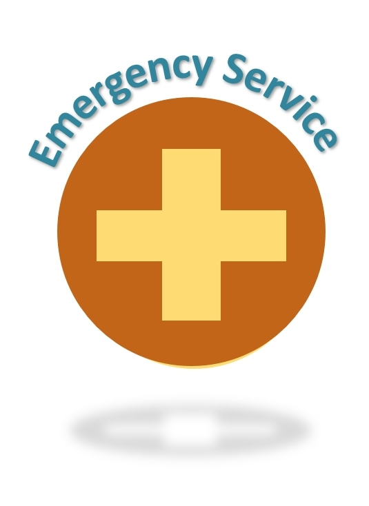 tvrh triangle veterinary referral hospital trianglevrh Emergency Icon.jpg