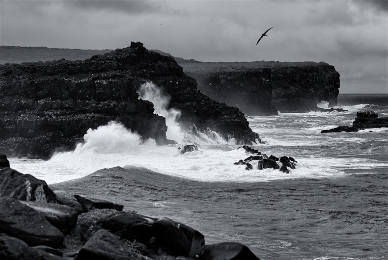 Espanola_Island-Black-and-white-Coast-Ecuador-Grayscale-Island-Landscape-Ocean-Seawater-Shore-e1357921466265.jpeg