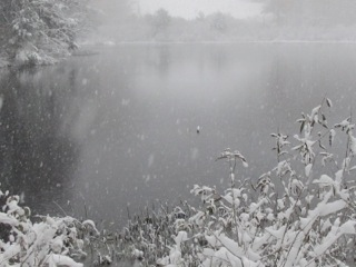 Shaker Pond