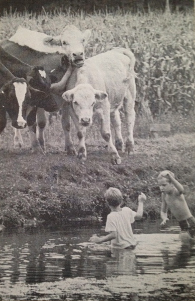 My older brother Thomas, playing on the farm with a cousin