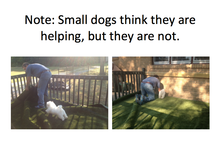 kennel13.png