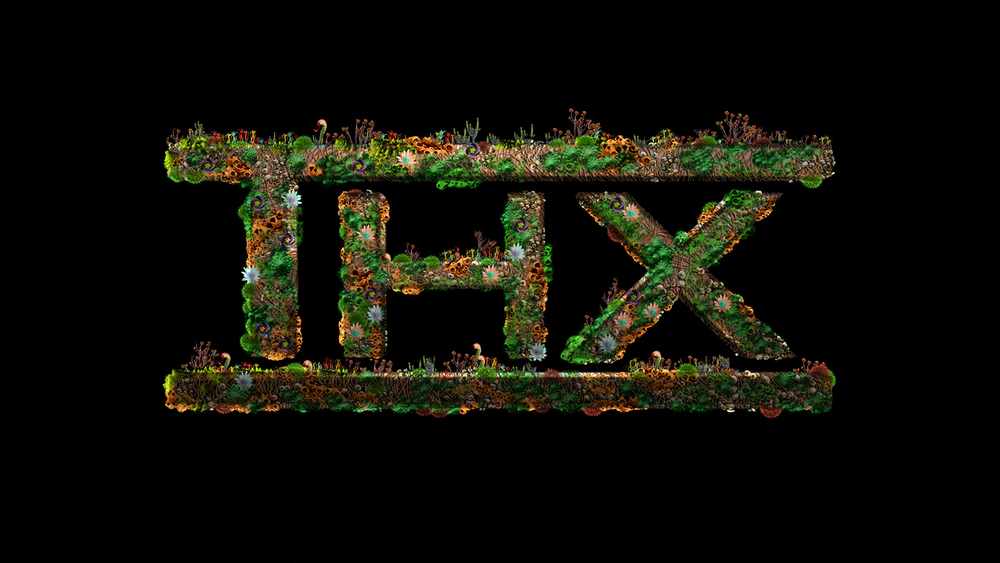 THX-01chia.jpg